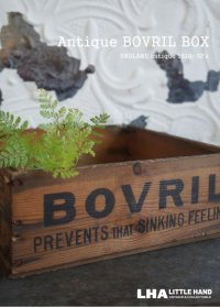 【RARE】ENGLAND antique BOVRIL BOX 木製ウッドボックス[スクエア] 1910-30's
