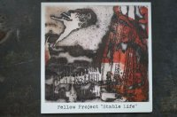 FELLOW PROJECT    /STABLE LIFE  CD
