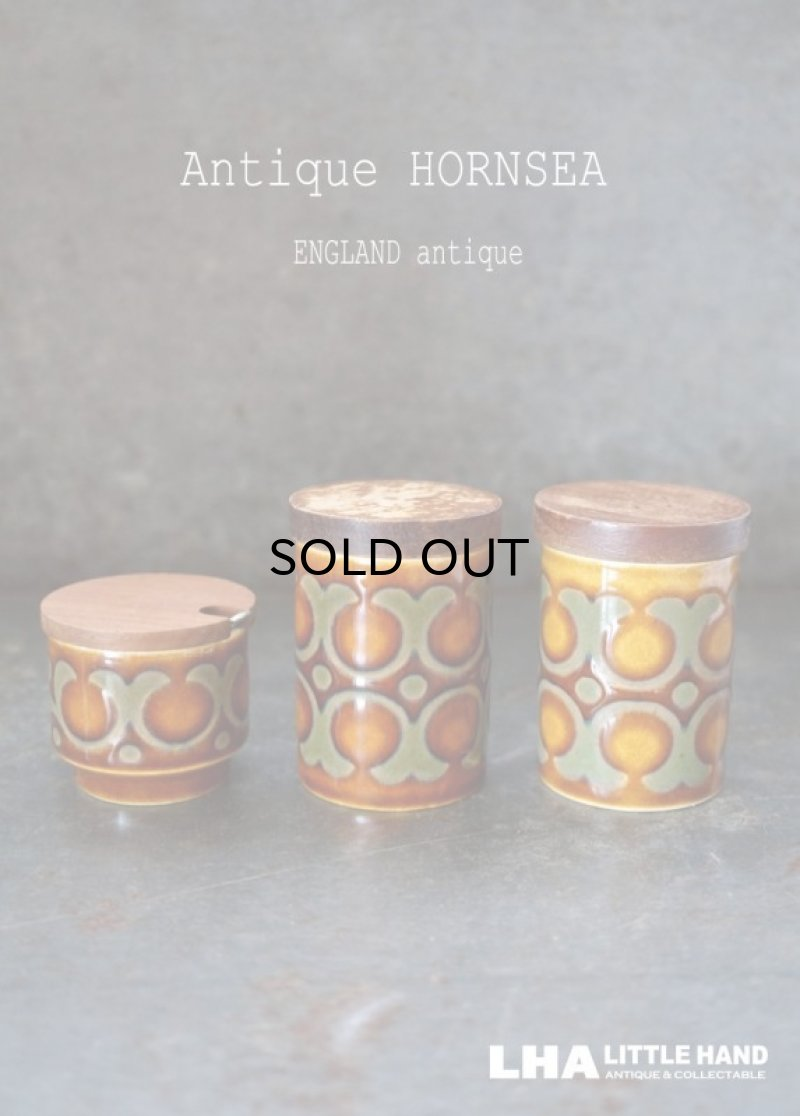 画像1: ENGLAND antique HORNSEA 【BRONTE】 イギリスアンティーク ホーンジー ブロンテ ソルト&ペッパー マスタードポット ヴィンテージ 1970's