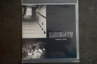 LIKE BATS / Midwest Nothing CD