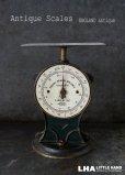 画像1: ENGLAND antique イギリスアンティーク SALTER POSTAL SCALE ポスタルスケール no.25 はかり 1920's  (1)